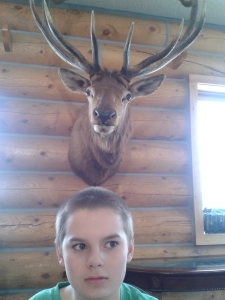 I feel like someone's watching over my shoulder. COuld be a guardian angel, could be an elk. Or both.