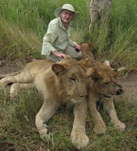 Lion Sitter