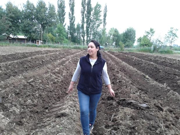 05-preparndo-tierra-para-plantacion-lupulo